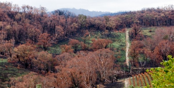 Victorian Bushfires – Hume, Macedon Ranges and Mitchell Shires